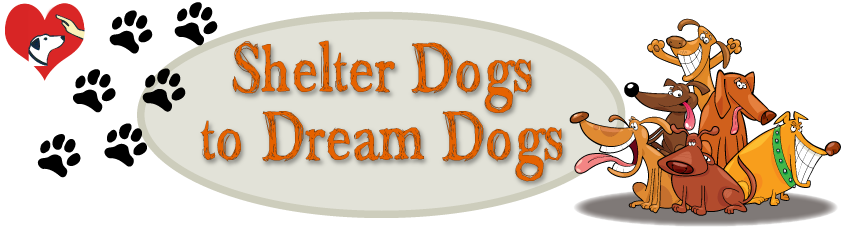 Shelter Dogs to Dream Dogs Logo